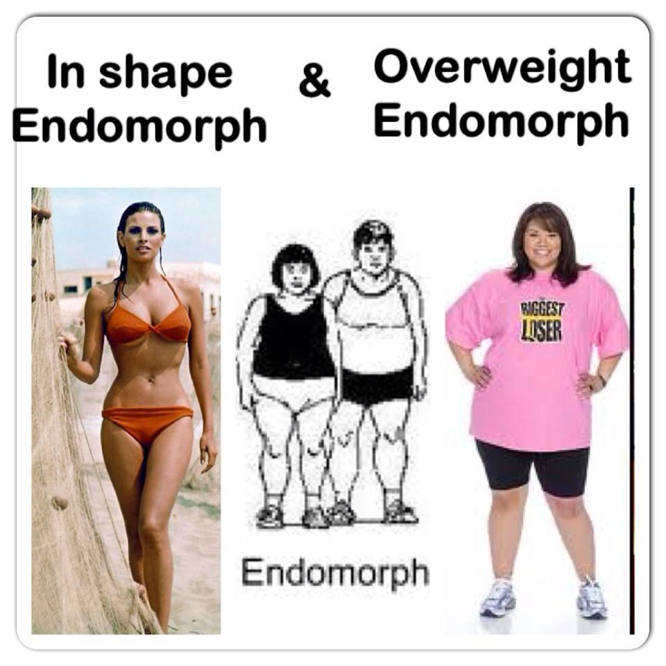 Программа для похудения эндоморф